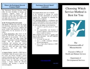 An Overview of Self-Determination and DDS Service Models